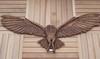 Cedarwood_owl